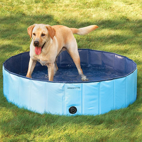 hunde pool doggy pool hundepool swimmingpool f r hunde 80 120 160 cm blau ebay. Black Bedroom Furniture Sets. Home Design Ideas